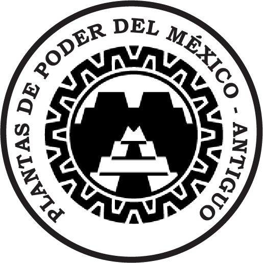 Esencias chamánicas del México Antiguo